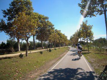 Passejada en bici pel Parc Fluvial del riu Llobregat