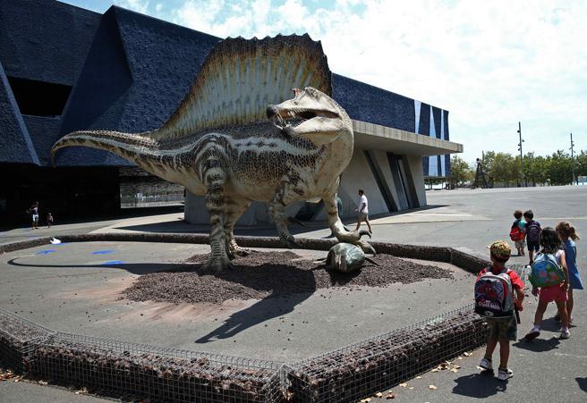 Spinosaurus, el gegant perdut del cretaci